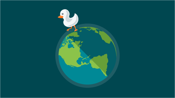 A very inconvenient truth – why does Ducky exist?